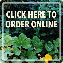 Click here to order Zakea Farmacy products online now!